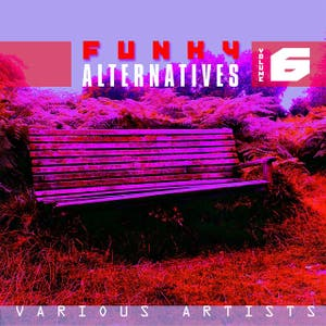 Funky Alternatives Vol.6