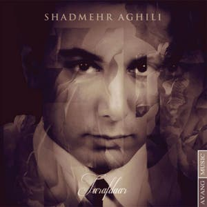 Shadmehr Aghili