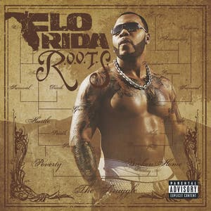 04 flo rida shone ft  pleasure p