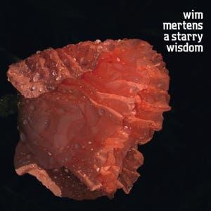 Wim Mertens: A Starry Wisdom