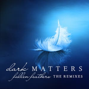 Fallen Feathers (The Remixes)