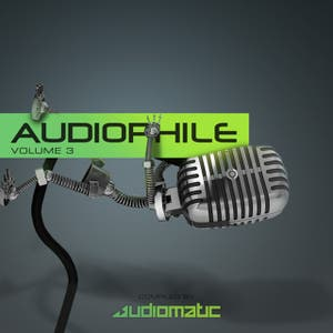 Audiophile Vol.3