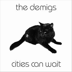 The Demigs