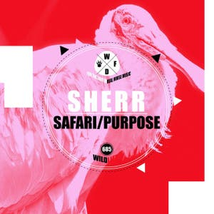 Safari / Purpose