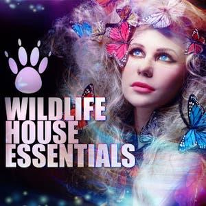 Wildlife House Essentials