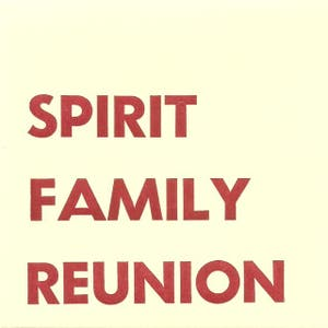 Spirit Family Reunion