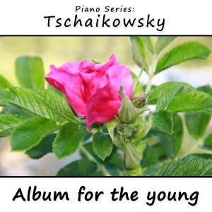 Album for the Young (Jugendalbum/Kinderalbum)