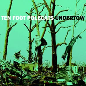 Ten Foot Polecats