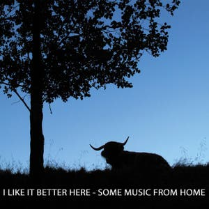 I Like It Better Here - Some Music From Home