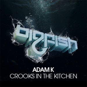 Crooks In The Kitchen