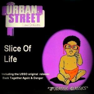 Urban Street Soul Orchestra