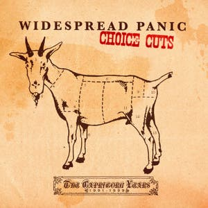 Choice Cuts: The Capricorn Years 1991-1999