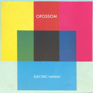 Electric Hawaii