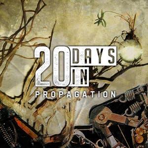 20 Days In