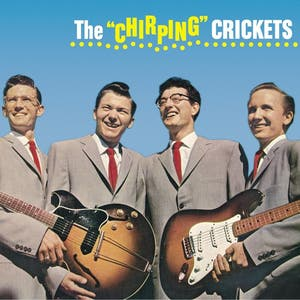 Its So Easy   Buddy Holly & The Crickets
