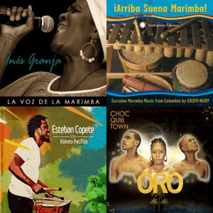 Latin Roots 40: Catalina Maria Johnson on Afro Colombian music pt.1