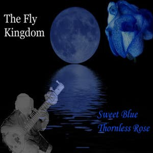 The Fly Kingdom