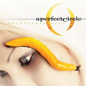 A Perfect Circle – Thirteenth Step