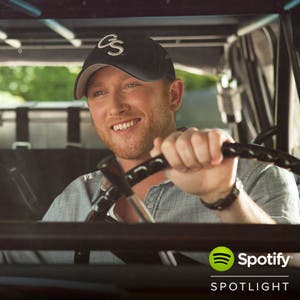 Spotify Spotlight on 2014 (Country)