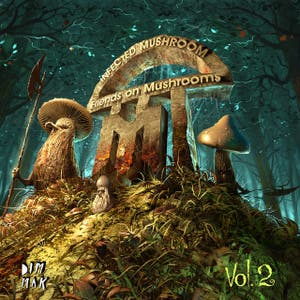 Friends on Mushrooms, Vol. 2