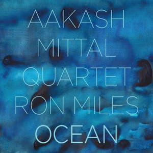 The Aakash Mittal Quartet