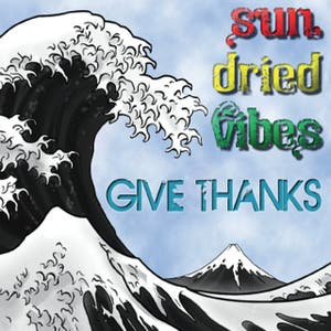 Sun-Dried Vibes