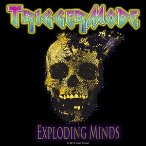 TriggerMode