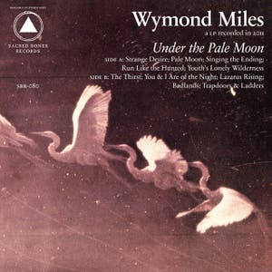 Under the Pale Moon