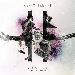 Assemblage 23
