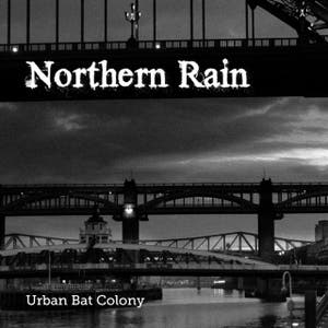 Urban Bat Colony – Northern Rain