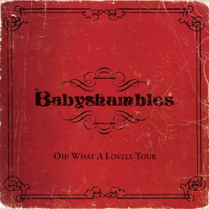 Babyshambles – Oh What A Lovely Tour - Babyshambles Live