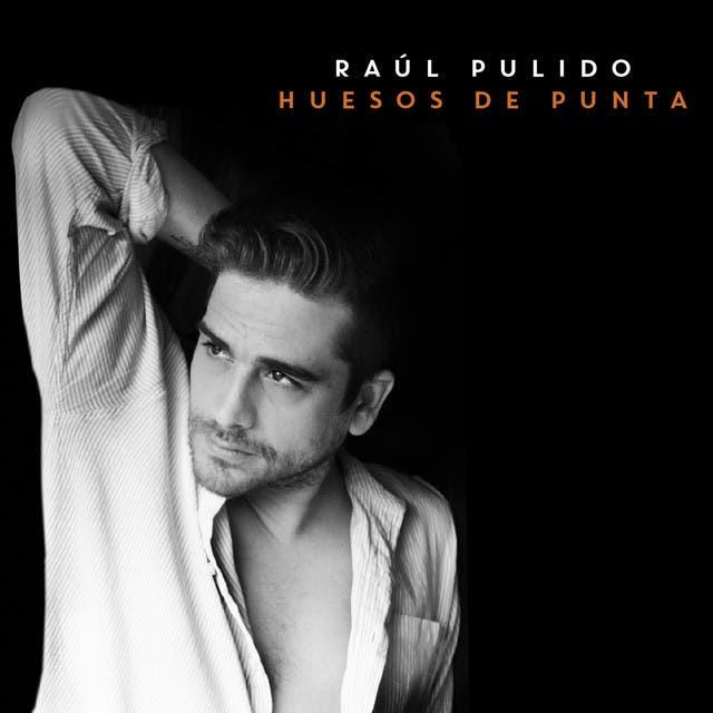 Raúl Pulido