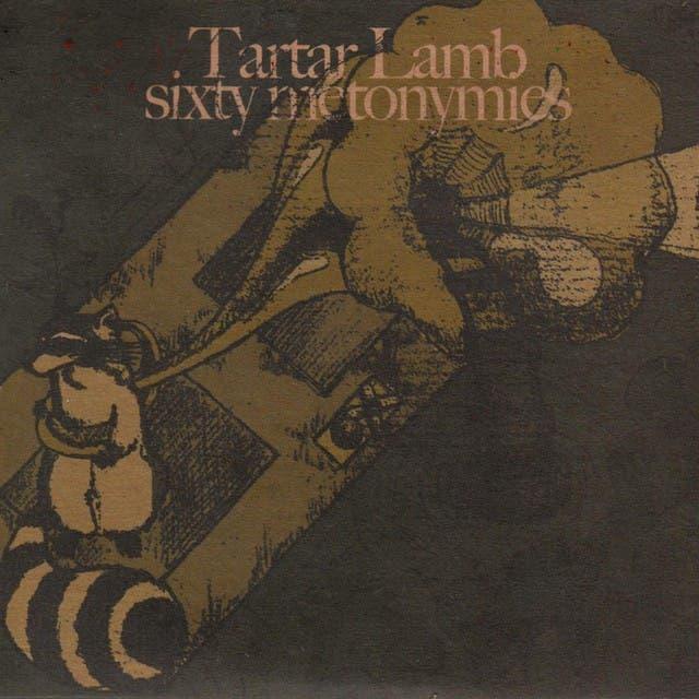 Tartar Lamb