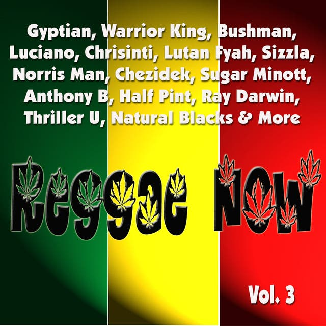 Reggae Now Vol. 3