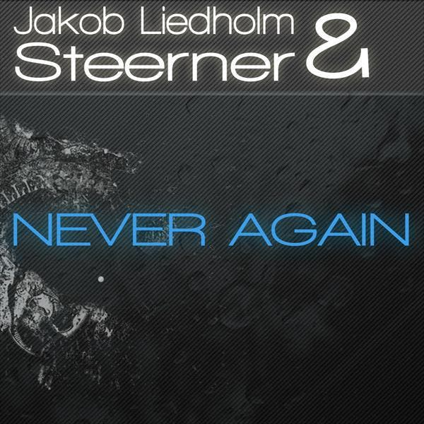 Jakob Liedholm & Steerner