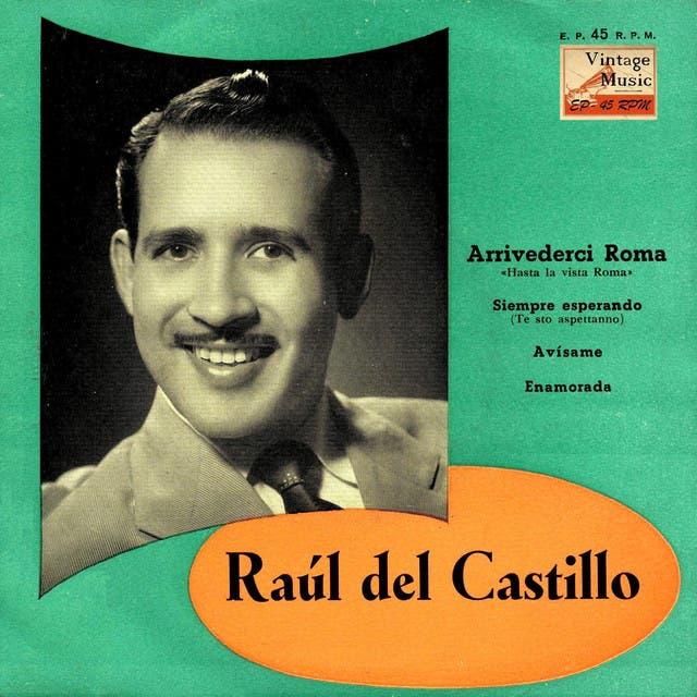 Raul Del Castillo
