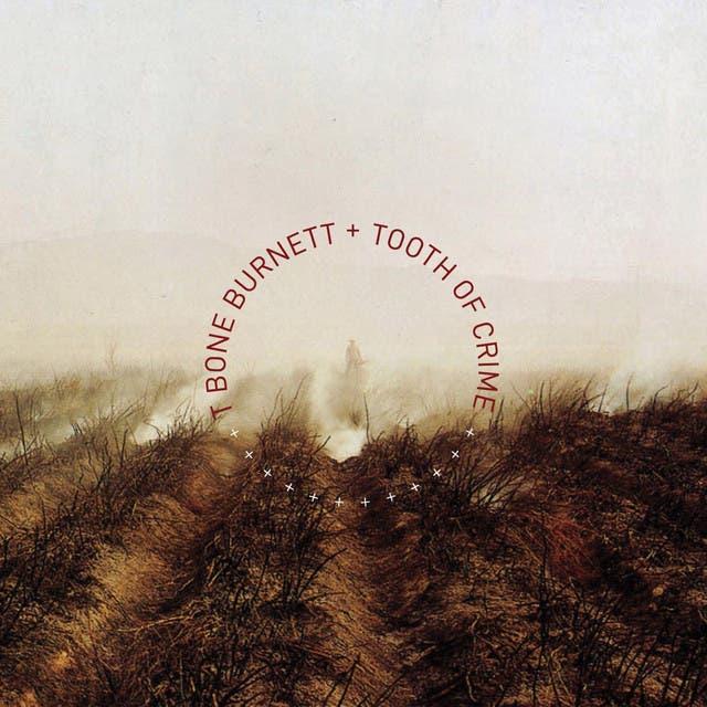 T-Bone Burnett image