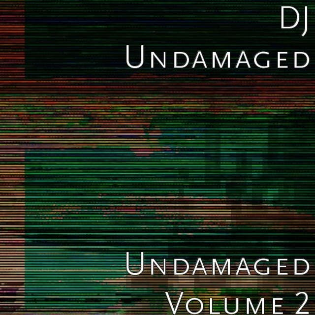 Undamaged Volume 2