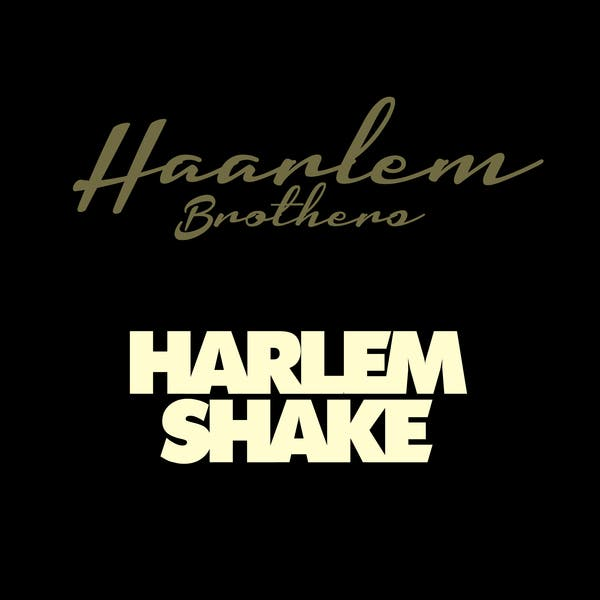 Haarlem Brothers image