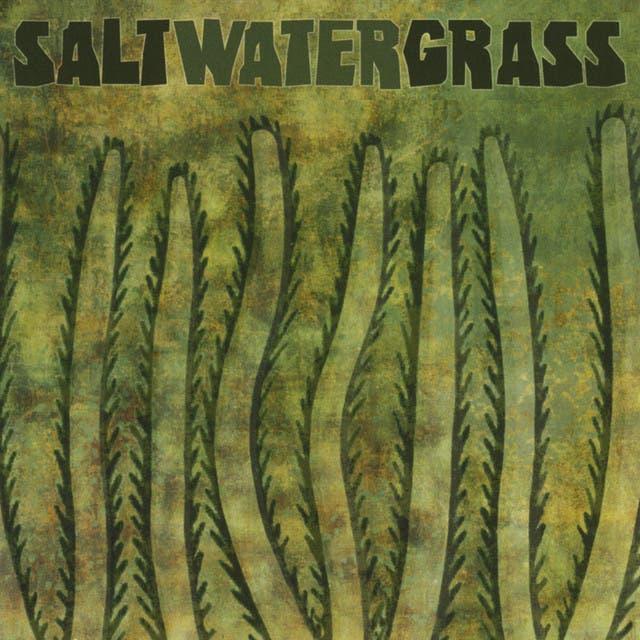 Saltwater Grass image