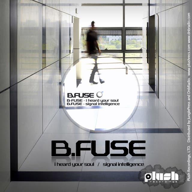 B Fuse