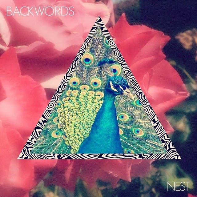 Backwords image