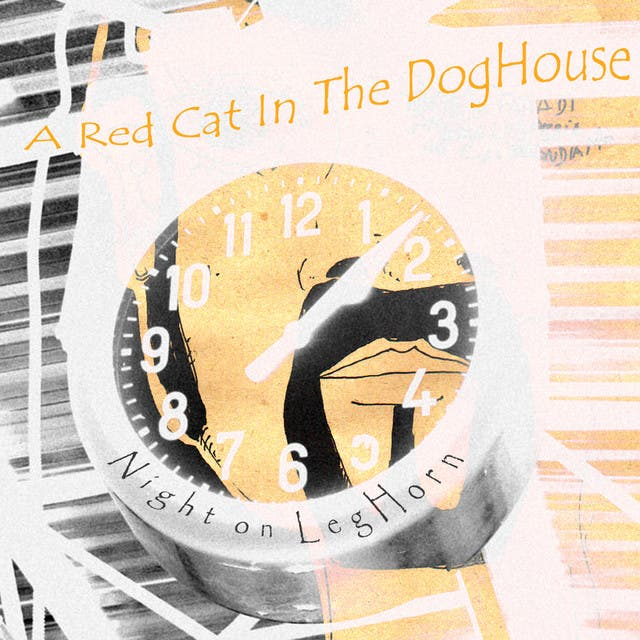 A Red Cat In The Doghouse