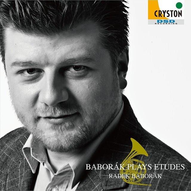 Radek Baborak image