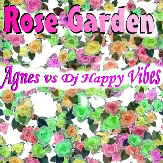 Agnes Vs. DJ Happy Vibes