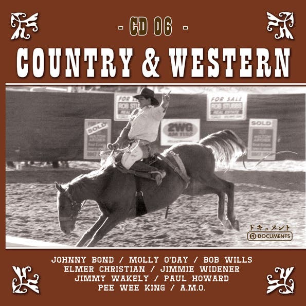 Country Hits Vol. 6