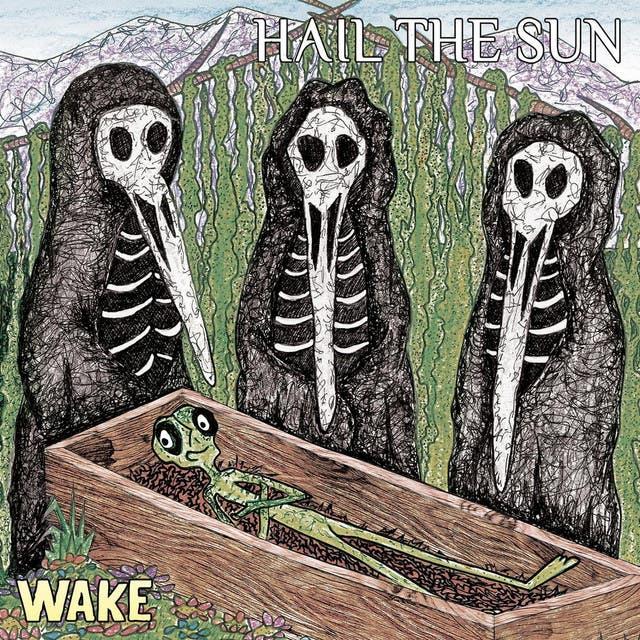 Hail The Sun image