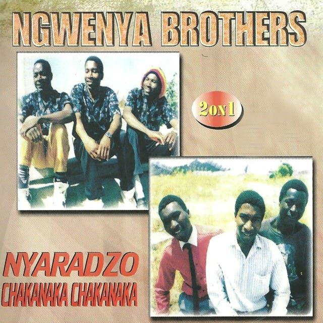 Ngwenya Brothers