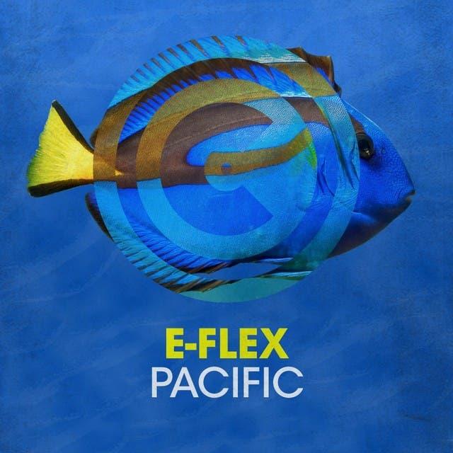 E-Flex