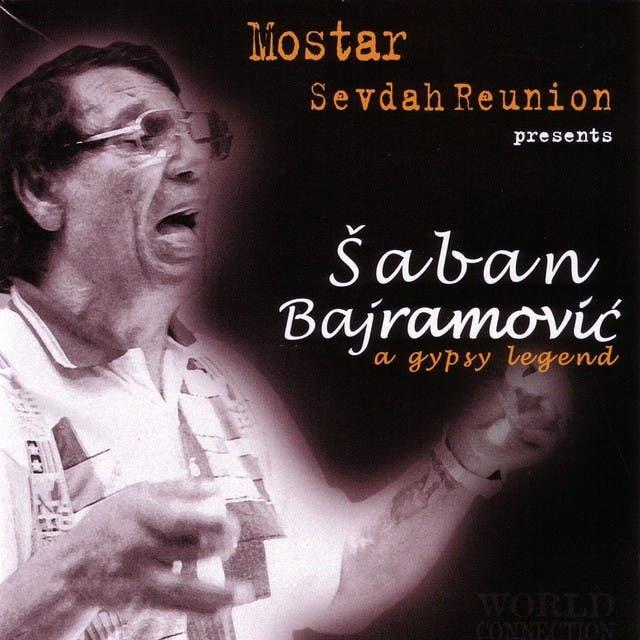 Saban Bajramovic image
